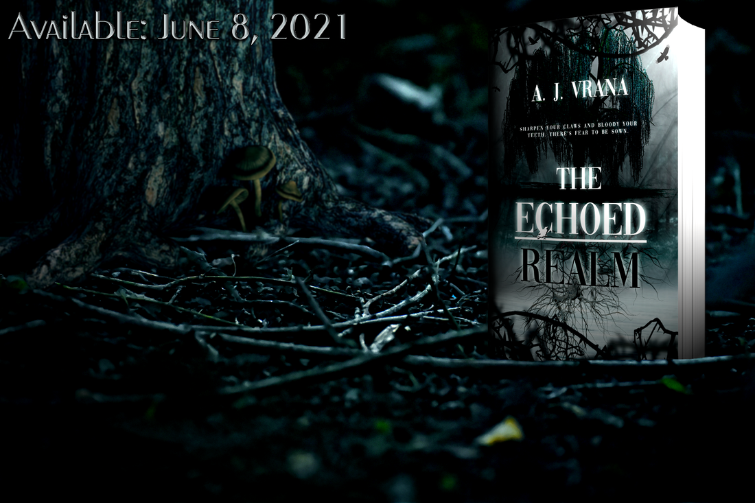 Cover reveal for The Echoed Realm (The Chaos Cycle Duology #2) by A.J. Vrana